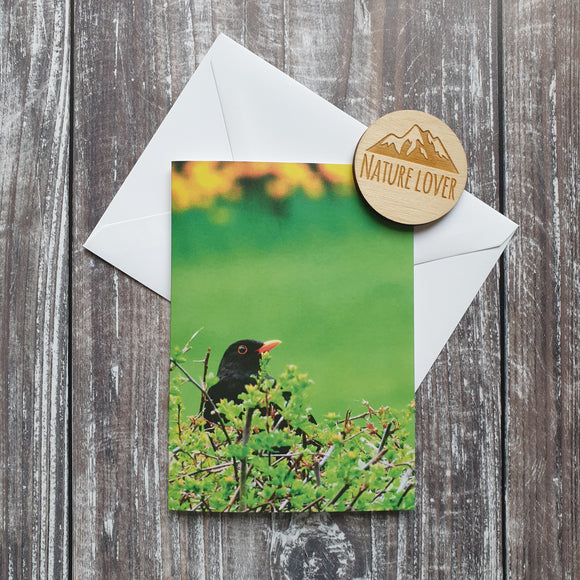 Blackbird Photographic Greeting Card