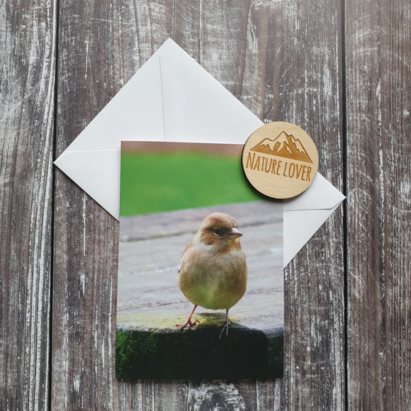 Chaffinch Photographic Greeting Card