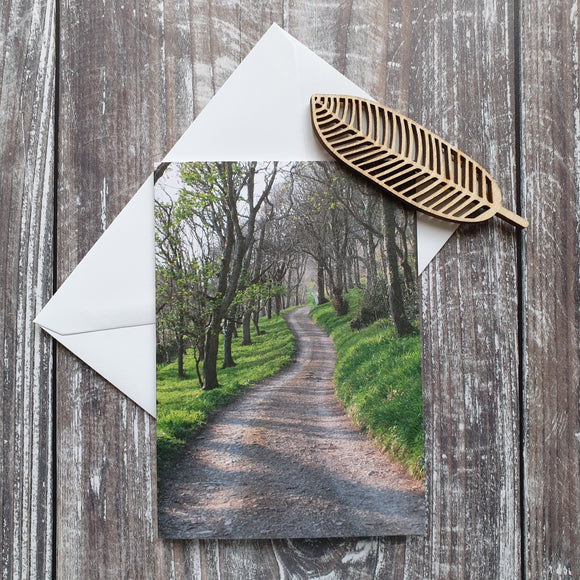 Woodland Walk Photographic Greeting Card