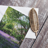 Bluebell Woodland Photographic Greeting Card