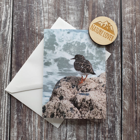 Turnstone Photographic Greeting Card
