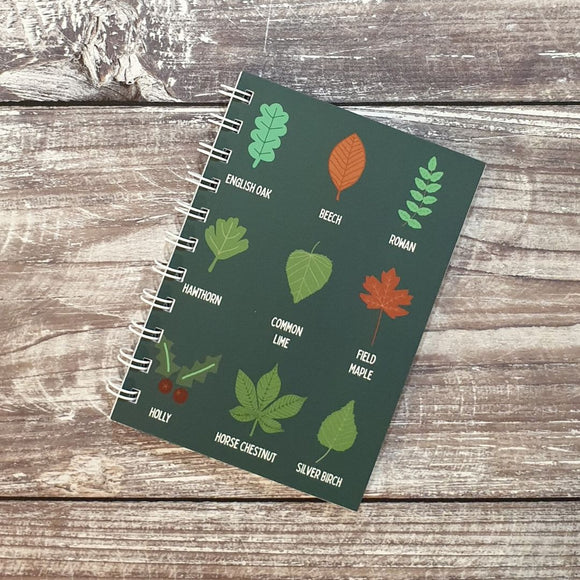 Leaf Identification - Teal Notebooks