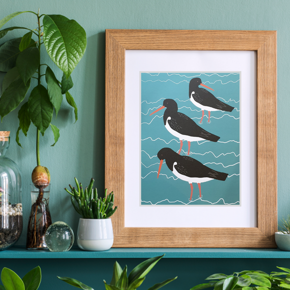 Oystercatchers Art Print