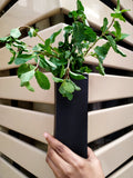 VAH Black Magnetic Hydroponic or Artificial Plants Holder for Refrigerator Kitchen Counter Office Decor Desk Plant Decoration ( Hanging or Lay Flat)