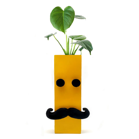 VAH Yellow 3D Eye and moustache Magnetic Hydroponic or Artificial  Plants Holder for Refrigerator Kitchen Counter  ( Hanging or Lay Flat)