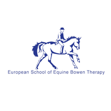 Load image into Gallery viewer, Bowen Therapy for Horse & Rider