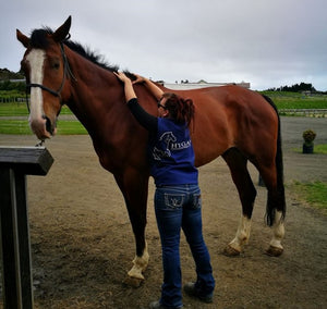 Bowen Therapy for Horse & Rider