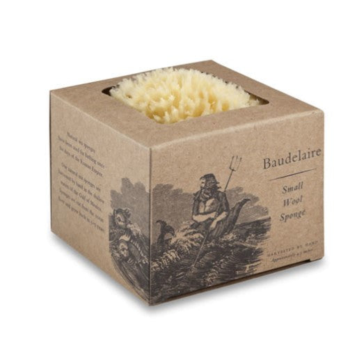 Baudelaire Wool Sponge Boxed Small