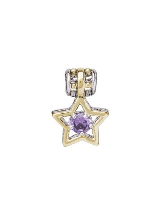 CELEBRATION BIRTHSTONE COLLECTION STAR CHARMS  FEBRUARY
