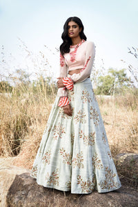 A Creamish Green Color Designer Lehenga For Wedding FF1506