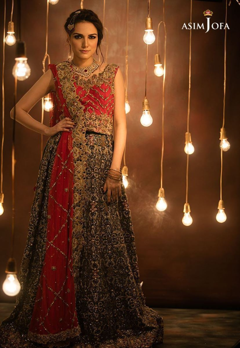 FF-026 Pakistani Bridal Gown-FABBILY