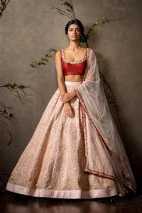 A Baby Pink-Red Designer Bridal Wear Lehenga Choli FF1552