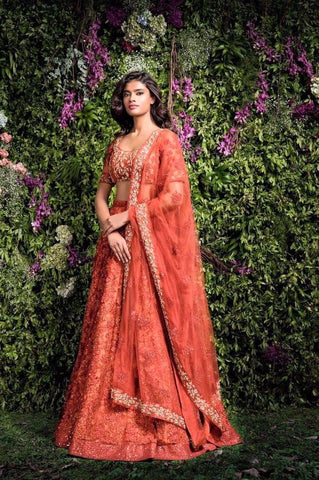 A Blush Red Embroidered Mainly Bride Lehenga Choli
