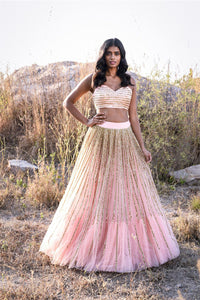 A Baby Pink Color Embroidered Fully Designer Lehenga Choli FF1805