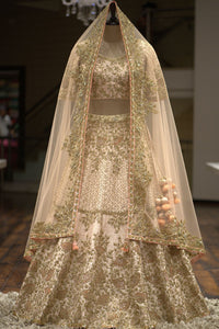 A Light Beige Raw Silk Sequins Embroidered Bridal Lehenga FF3342