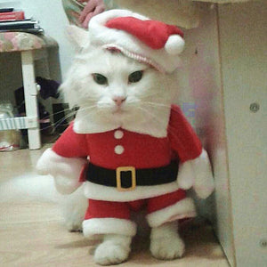 Top Selling Pet Sweaters, Best Selling Christmas Cat Clothes, Suit Winter Pet Clothes for Cat Costume, Warm Cat Coat Jacket Santa Claus