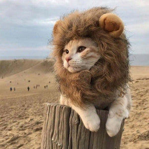 Hoopet Pet Cat Costume Clothes Cap Funny Hat Lion Mane Wig Hat Party Cosplay Accessory Out Door Head Wear