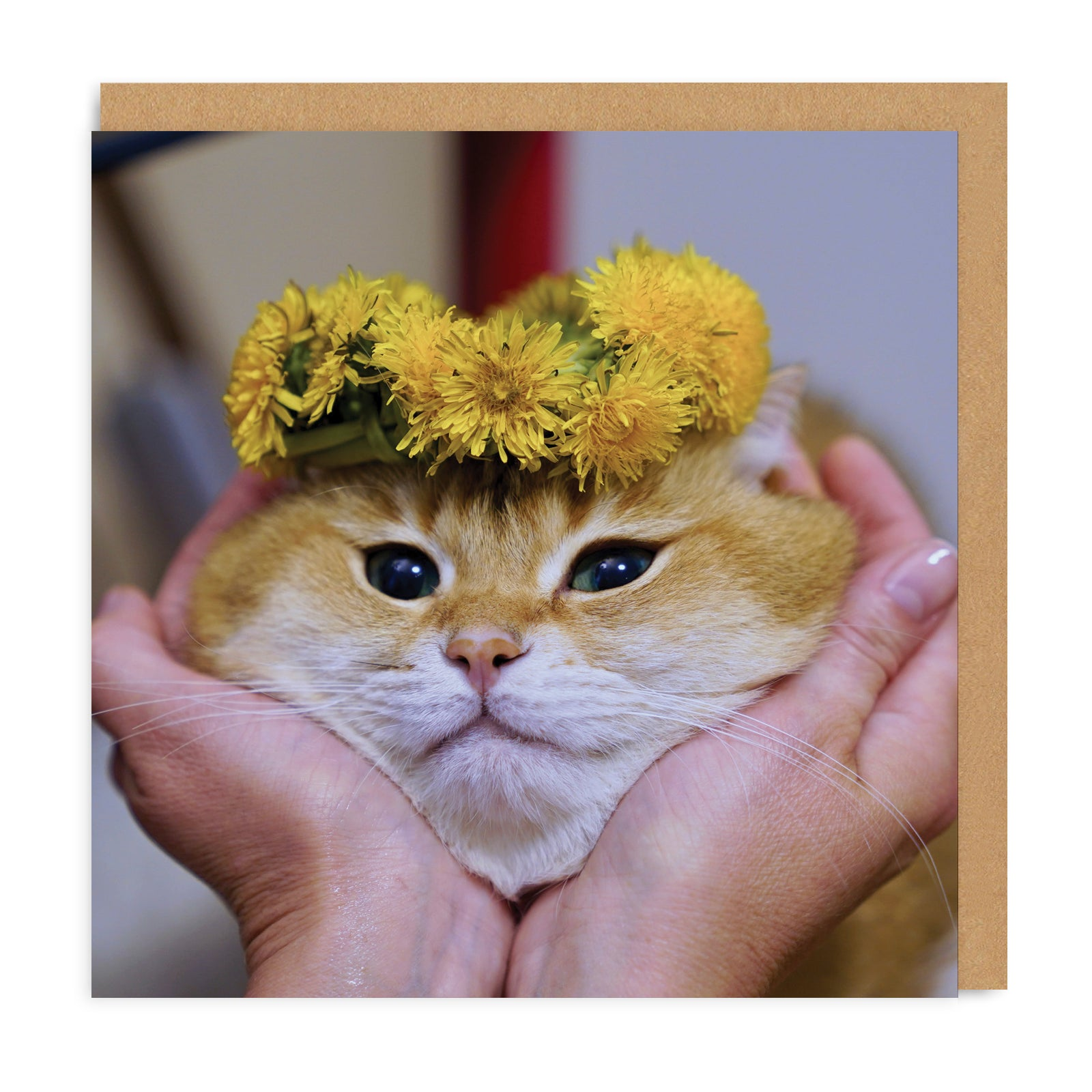Cat Face Square Greeting Card