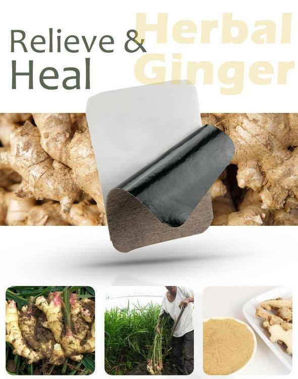 Insta-Heal Herbal Ginger Patch(20pcs)