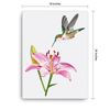 Lily and Hummingbird Canvas