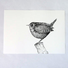 Load image into Gallery viewer, The Castleton Wren risograph print