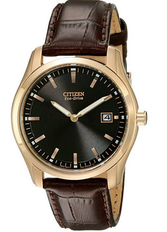 Citizen Eco-Drive Stainless Steel Watch
