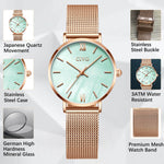 Load image into Gallery viewer, 8063C | Quartz Women Watch | Mesh Band-megalith watch