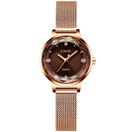 Load image into Gallery viewer, 8024C | Quartz Women Watch | Mesh Band-megalith watch