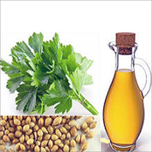 Load image into Gallery viewer, Coriander Oil (Extra Virgin)