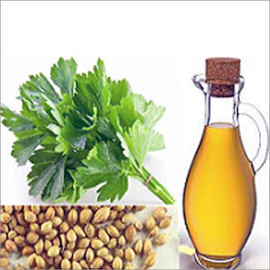 Coriander Oil (Extra Virgin)