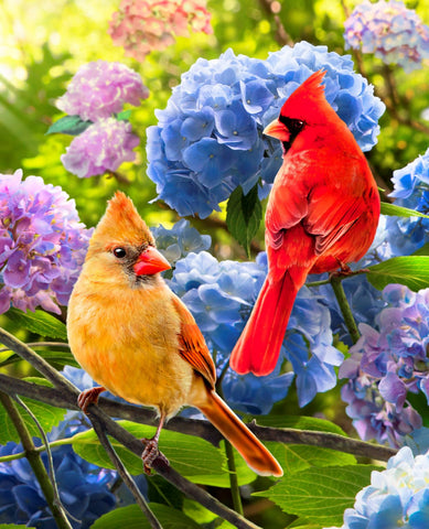 Cardinals and Hydrangea- Digital Panel