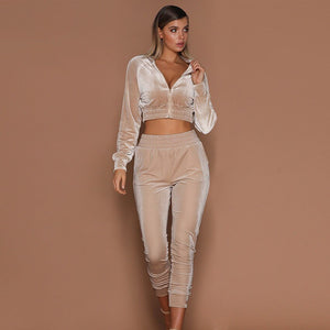 2019 Women 2pcs Short Zipper Hoodies Sweatshirt Elasic Waist Pants Sets Velvet Tracksuit Casual Suit