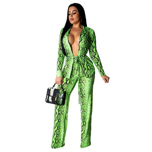 Autumn Two Piece Sets 2020 Casual Long Sleeve Snake Print Top Full Length Pants Set Tracksuit Women Sexy Sweat Suits