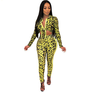 Hooded Tracksuit Women Spring Leisure Suit Long Sleeve Snake Print Jacket Top Coat Pant Two Piece Sets Women Sweat Suits
