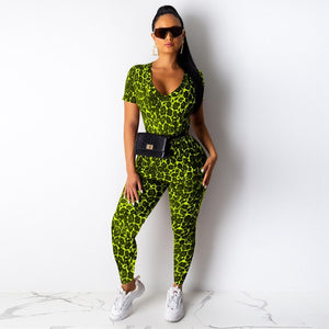 Leopard Print Women Two Piece Set Top Pants Tracksuit Sportswear Ladies Casual Suit Autumn Bodycon 2 Piece Women Set Clothes