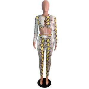 Snake Print Two Piece Set Women O Neck Long Sleeve Lace Up Crop Top High Waist Pencil Pants Bodycon 2 Piece Outfits