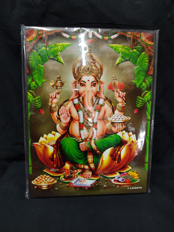 PHOTO GANESHA 12 x 8