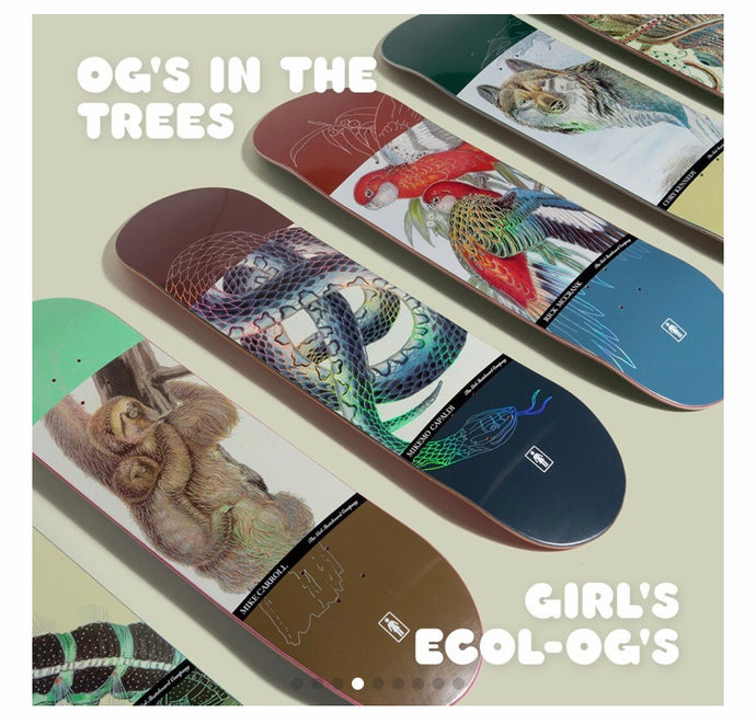 Girl Skateboards Ecol OG Series