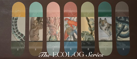 Girl-ecol-OG-Skateboards-