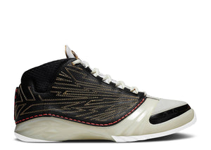 TITAN X AIR JORDAN 23 RETRO SP '10TH ANNIVERSARY'