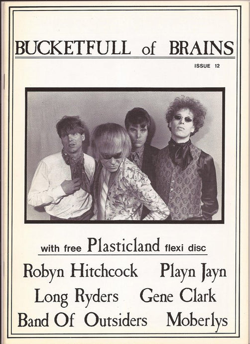 Bucketfull of Brains Issue 012; Plasticland