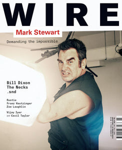 Wire Magazine Issue 293 (July 2008) (Mark Stewart)