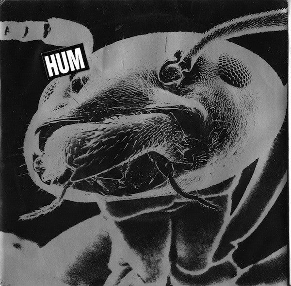 Hum - Sundress / Time is Melting