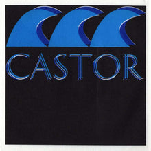 Load image into Gallery viewer, Castor - Carnival (Mud-020) (inside)
