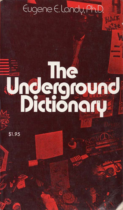 Underground Dictionary (Eugene E Landy, PhD)