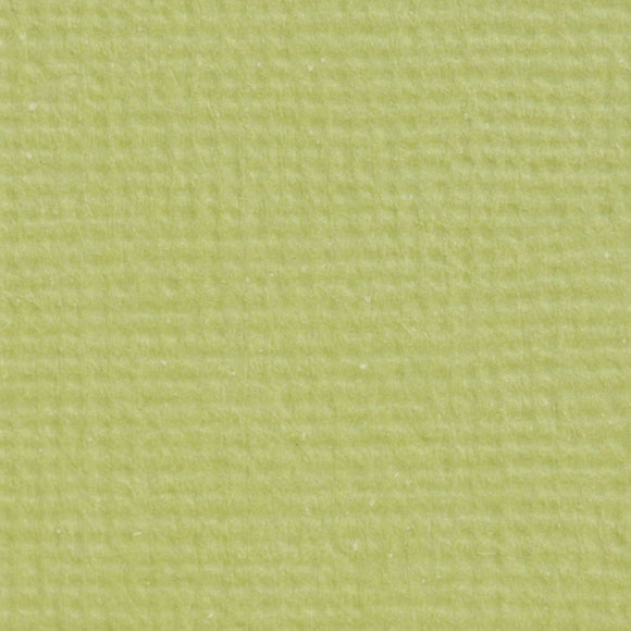 Set 5 fogli 30x30 cm Craft Perfect Textured - Pistachio Green