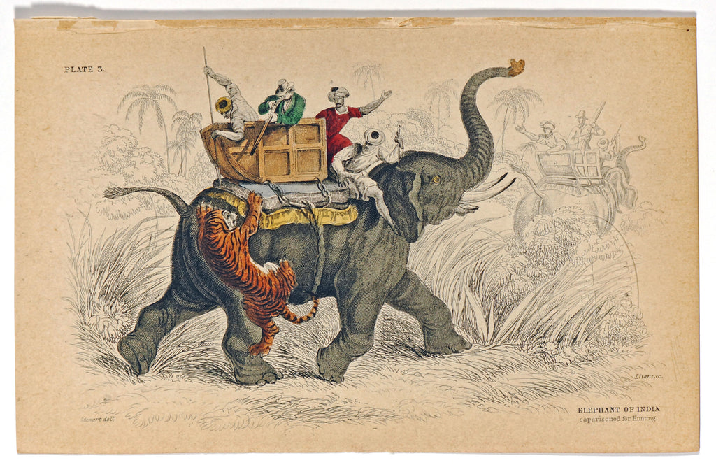Indian Elephant & Tiger Attack, Hand-Colored Antique Print (1835) - Original and Authentic Vintage Poster
