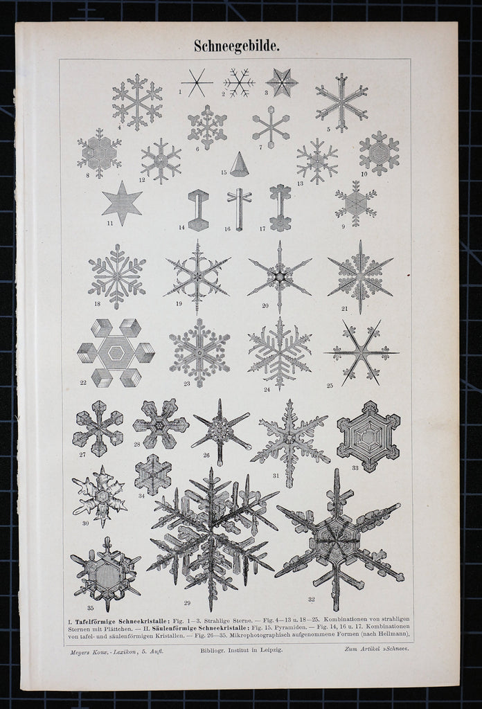 Snowflakes Antique Engraving (1895) - Original and Authentic Vintage Poster