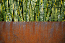 Load image into Gallery viewer, Corten Steel Edge Planters - FREE SHIPPING!