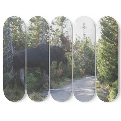 New Custom Designed Moose Skateboard Wall Art - Merchandize.ca